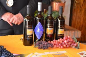Sorseggi di Vino 2015 - Casa Angelo - 004