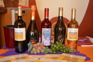 Sorseggi di Vino 2015 - Casa Angelo - 005