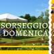 Sorseggio-di-vino-Casa-Angelo-2016